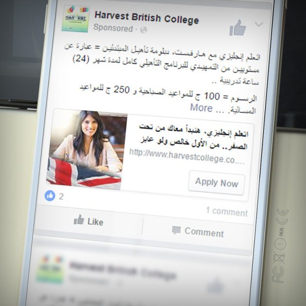Harvest Facebook and Instagram Campaign
