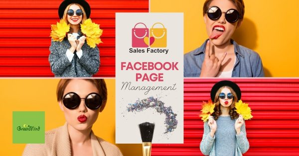 Facebook page management for Sales Factory