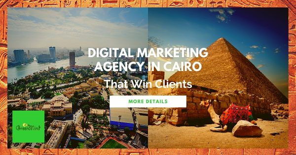 Digital Marketing Agency in Cairo That Win Clients